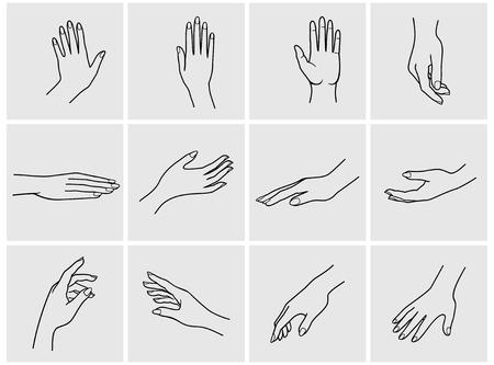 botton: Hand collection - vector line illustration