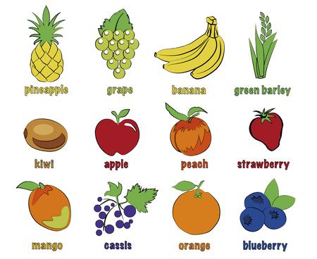 Set of colorful cartoon fruit icons orange, strawberry, apple, banana, pineapple, mango, peach, kiwi, grape, cassis blueberry green barley Vector illustration isolated on white