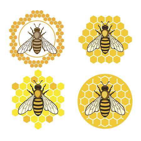 Honey bee set. Stock Illustratie