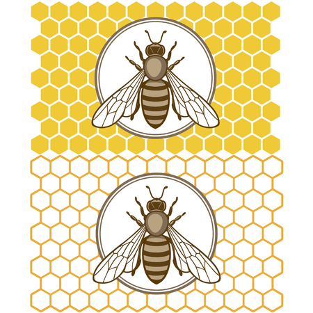 Honey bee set. Vector. Set of honey and bee labels for honey logo products. Isolated insect icon. Flying bee. Flat style vector illustration. 向量圖像