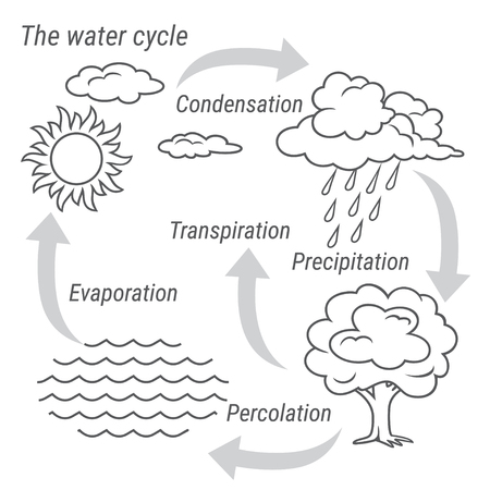 Vector schematic representation of the water cycle in nature. Illustration of diagram water cycle. Cycle water in nature environment. Stock Illustratie