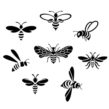 bees set on white background, Flat style vector illustration.