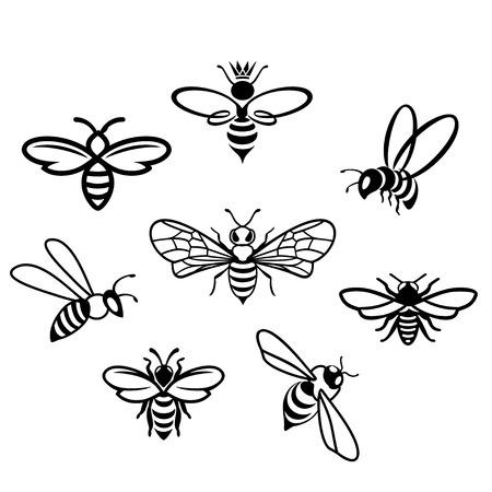 bees set on white background, Flat style vector illustration.