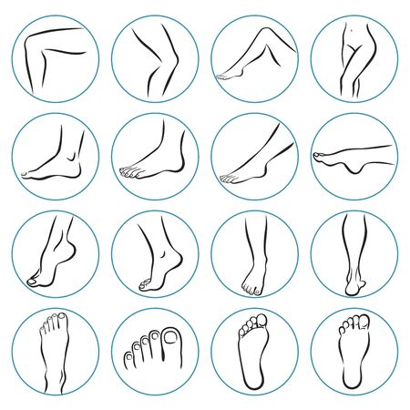 Human body parts. linear icons of human legs. Foot care Icons Set. Vector illustrations line art pack of human feet in various gestures. Human foot line icon. Human leg, ankle, thigh, knees, orthopedics, toe. Organs concept. Vector illustration can be used for topics like anatomy, medicine, health. Human body parts. Thin line icon.