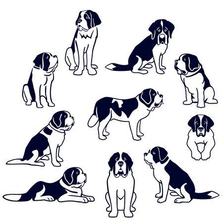 St. Bernard dogs 矢量图像