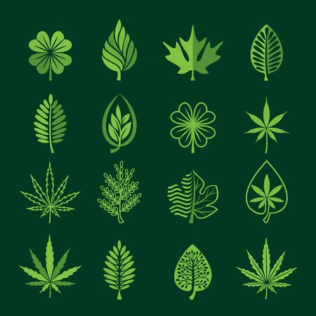 Leaf icons on dark background.