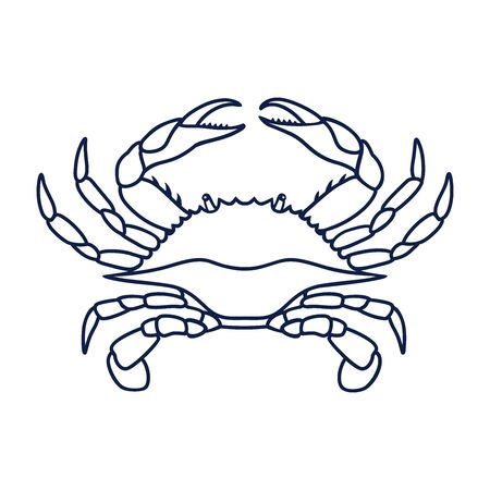 Crab in navy blue color. Blue Crab on white background. Vector   design, symbol or icon in simple flat style. Linear drawing of a crab. Vector illustration.