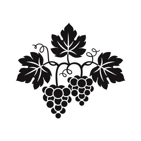 Grapes decorative pattern for wine design concept, bar menu, juice drinks, fruit juices, healthy vegan food, viticulture, wine or juice label, grape seed oil on white background. Vector illustration. 向量圖像