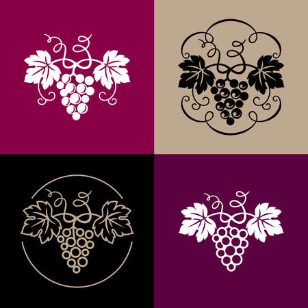 Set of grapes decorative pattern for wine design concept, bar or restaurant menu, juice drinks, fruit juices, healthy vegan food, viticulture, wine or juice label, grape seed oil. Vector illustration. Banco de Imagens - 155786418