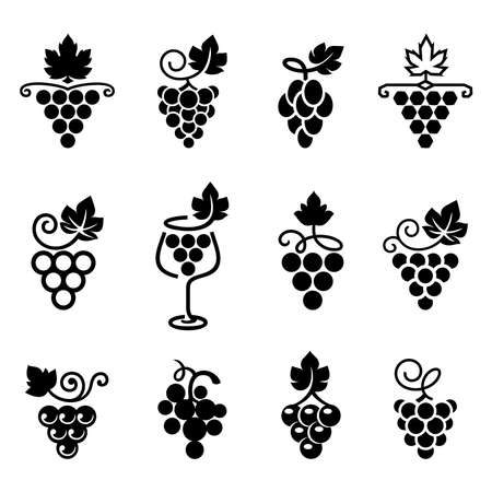 Set of leaves, bunch of grapes in simple flat style. icons for wine design concept, wine or juice labels, grape seed oil, organic winery, viticulture, healthy vegan food. Vector illustration.