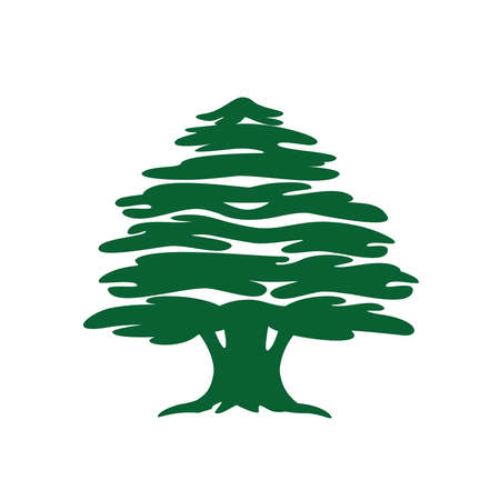 Abstract cedar tree. Lebanese cedar silhouette can be used in  design, icon, symbol. Vector illustration. Ilustração