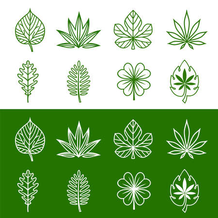 Linear abstract leaf icons set. Various shapes of leaves of trees and plants. Elements for organic, bio  landscape business, agriculture, wellness spa  . Vector illustration. Ilustração