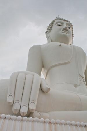 Buddha Stock Photo - 11137094