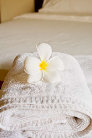 Frangipani flowers in the room at Hotel