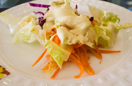 Salad Vegetables on a white plate photo