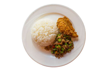 Rice and curry with fried chicken on a white dish Stock Photo - 17970043