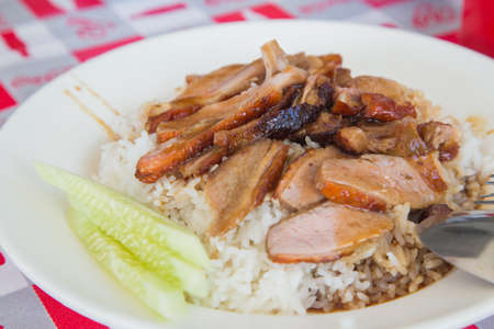 Duck with rice topped with sauce in dish