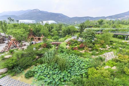 path cottage garden: Landscape view