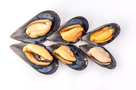 Close up to clam