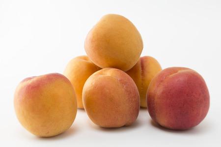 apricot: apricot