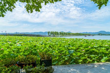 The scenery of Hangzhou, West Lake
