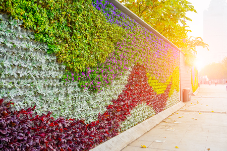 Decorated wall with plants growing on it
