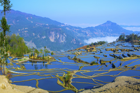Yuanyang terrace, Yunnan, China Stock Photo
