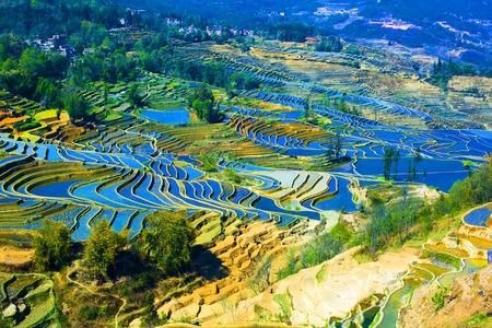Yuanyang terrace, 윈난, 중국 스톡 콘텐츠