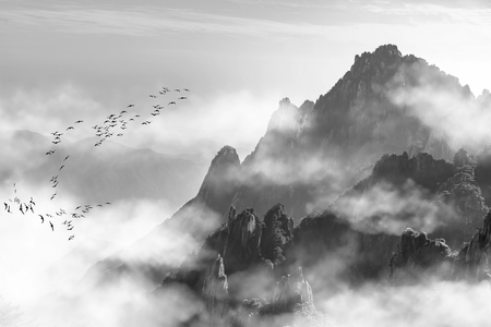 Mount Huangshan pine and fog