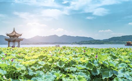 landscape of West Lake, Hangzhou
