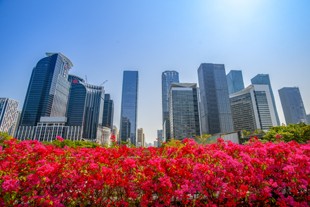 low angle view of skyscrapers in Shenzhen,China. 版權商用圖片
