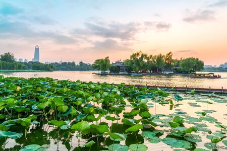 Jinan Daming Lake