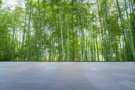 Floor tiles and green bamboo