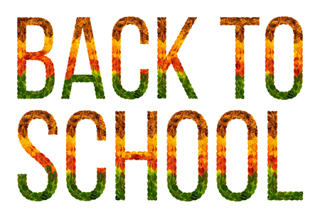 Back to school word is written with leaves white isolated background, banner for printing, creative illustration school colored leaves. Stock Photo