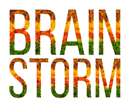 Brainstorm word is written with leaves white isolated background, banner for printing, creative illustration colored leaves brainstorm . Zdjęcie Seryjne