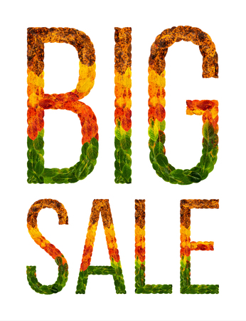 Big sale word is written with leaves white isolated background, banner for printing, creative illustration sale colored leaves. Stock Photo