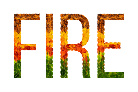 fire word is written with leaves white isolated background, banner for printing, creative illustration fire colored leaves. Stok Fotoğraf - 90294826