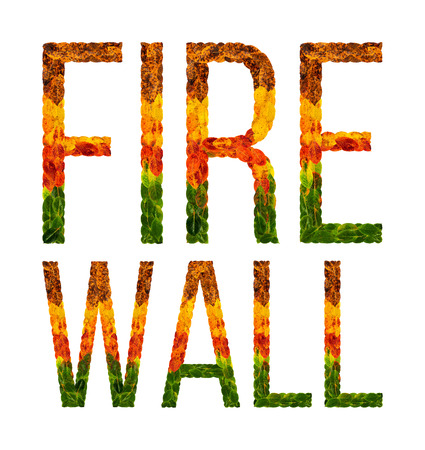 fire wall word is written with leaves white isolated background, banner for printing, creative illustration firewall colored leaves. Stock Photo
