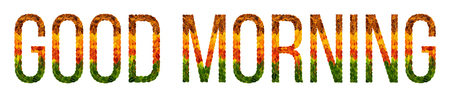 good morning word is written with leaves white isolated background, banner for printing, creative illustration of colored leaves.