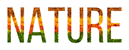 nature word is written with leaves white isolated background, banner for printing, creative illustration nature colored leaves.