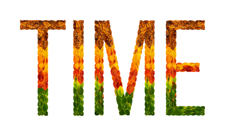 time word is written with leaves white isolated background, banner for printing, creative illustration time colored leaves. 写真素材