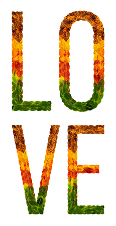 love word is written with leaves white isolated background, banner for printing, creative illustration love colored leaves. Standard-Bild