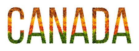 canada. word is written with leaves white isolated background, banner for printing, creative of color leaves canada