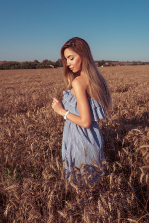 Girl in a wheat field in the summer in a blue dress and wheat in the hand of ears of corn. A woman walks across the field, long hair casual makeup. Happy enjoying a holiday in the countryside.