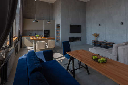 Modern minimalistic dark gray loft style studio apartment interior design. kitchen, sitting area, workplace, shower and bath. bright sun rays inside.