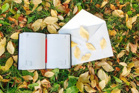 Pen sitting on the notebook with colorful autumn leaves photo