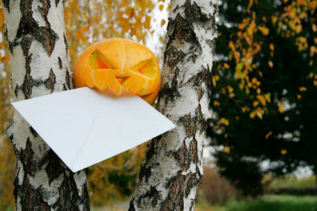 halloween  pumpkin eating letter  in autumn leaves in park photo