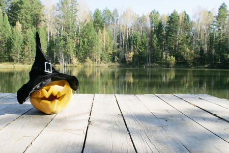 halloween pumpkin in autumn leaves in park photo