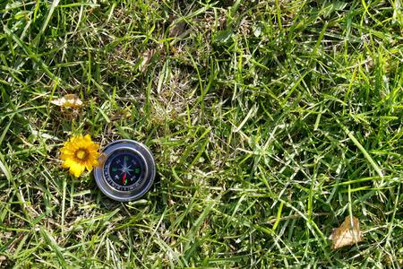 navigational light: Classic compass on  grass field background. autumn