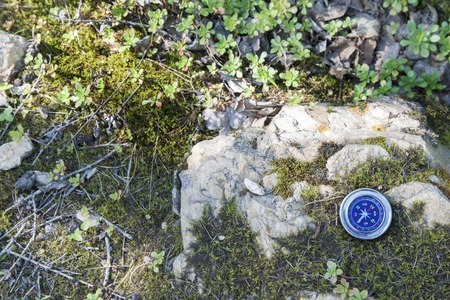 rosa dei venti: Compass analogici Abbandonato sulla pietra in estate